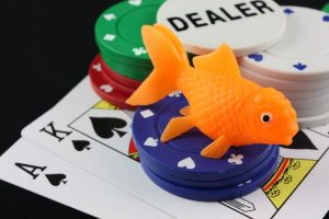 Кто такой фиш в покере?